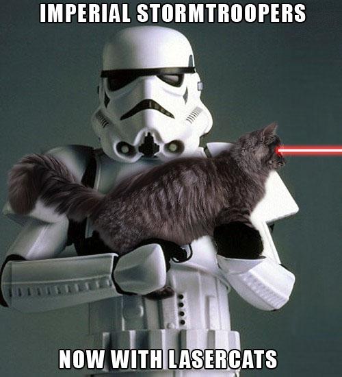 storm-troopers-cat-laser.jpg?w=529